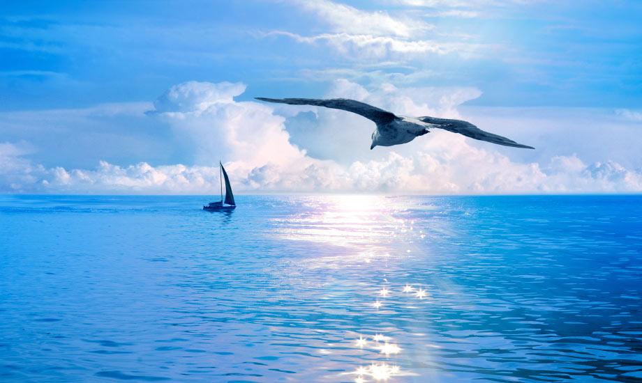 Båtblogg – De beste seilbåtbloggene
