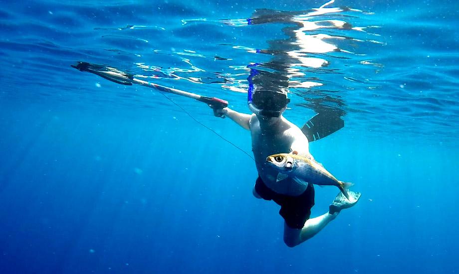 Harpunjakt etter fisk